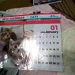 100円ショップダイソーのカレンダーはディズニーやネコなど種類が豊富!