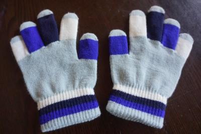 ミーツ防寒用手袋使用前4