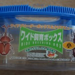 100円ショップダイソー「虫かご」100円で使えるのか?