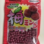 100円ショップダイソーでまたまたお菓子調達♪美味すぎる…!